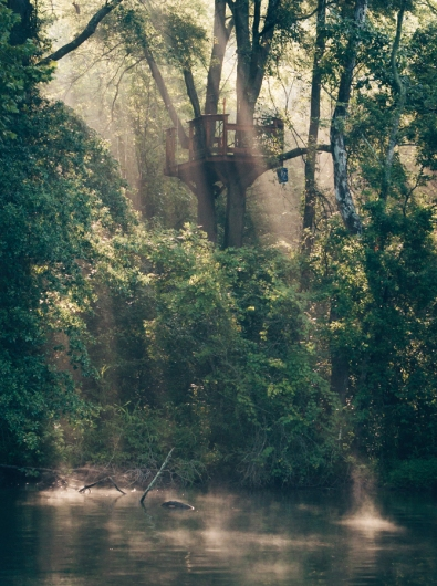 canopy-tour-header-small-1